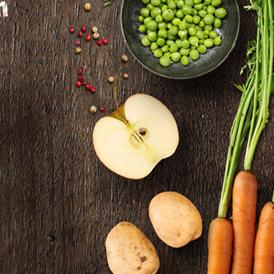 holistyczna karma dla psa - owoce i warzywa
