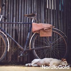 wycieczka rowerowa z psem