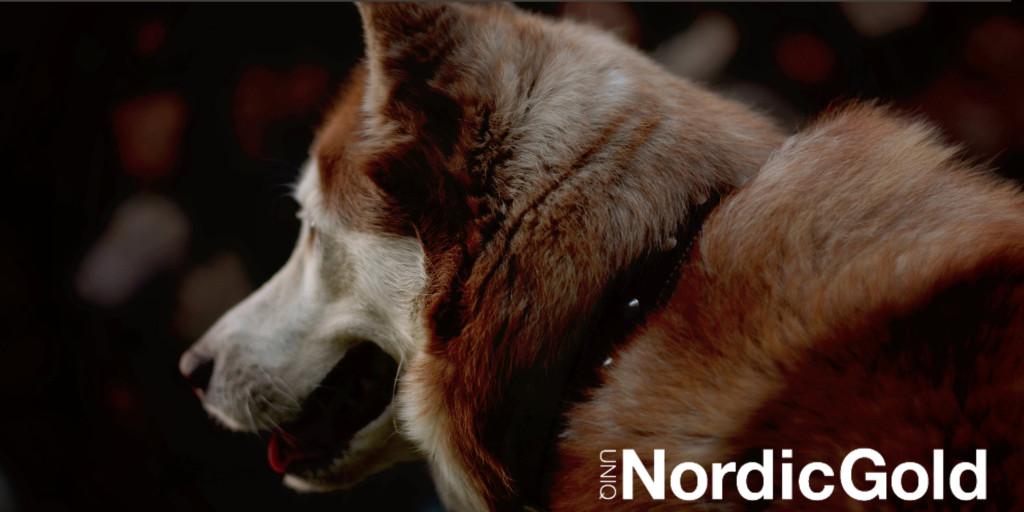 Sekret błyszczącej sierści psa