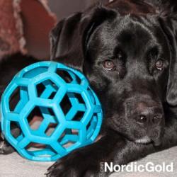 jak aktywnie karmić psa: zabawki edukacyjne