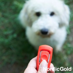kliker dla psa
